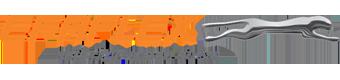 EFAFLEX Logo